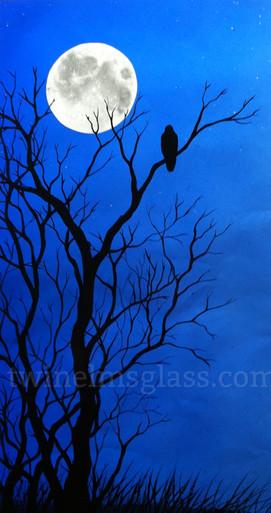 Black Bird In The Night