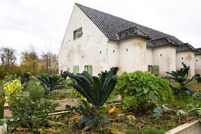 The cabbage garden - Photo Flemming Pede