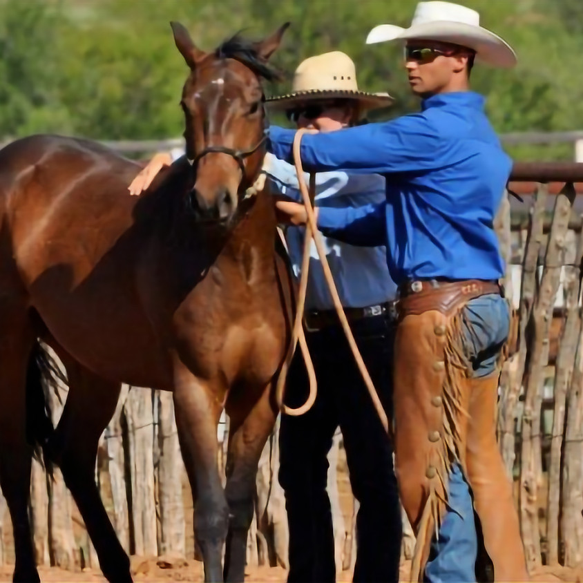 Mustang Training at The Horse First Farm (8/17-9/4)