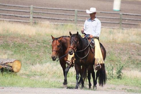 Ryan Rose 2 Horse BG.jpg