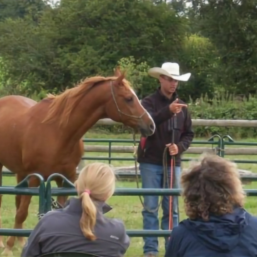 Texas Horse Development and 2-Day Clinic
