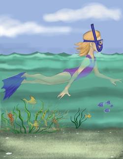 seaweed final rev-14.png