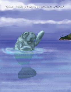 seaweed final rev-25.png