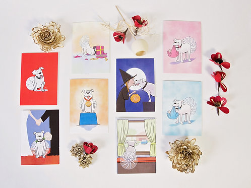 8 Pack SPECIAL-ty Greeting Cards - Your Choice