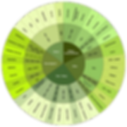 Cannabis Wheel Chart.png