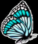 farfallo_blu.png