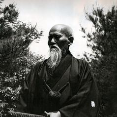 Budo Renshu