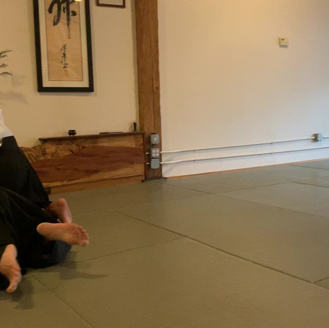 Aikido Techniques and Terminology