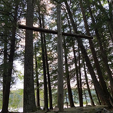 Cross in Forest.jpg