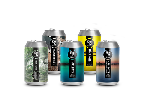 Mixed Box: Taster Pack (0,33l) x 24 Cans
