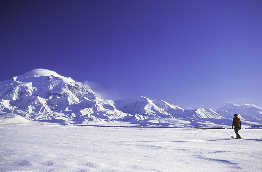 Denali_Walk_new.jpg