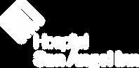 Logo-HSAI-B&W-02.png