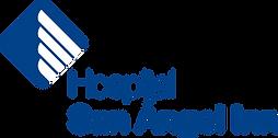 Logo-HSAI-Monocromatica.png