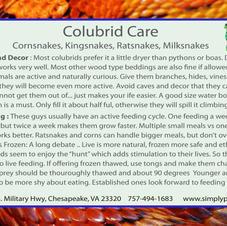 Colubrids Side 1