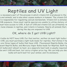 UVB and Reptiles