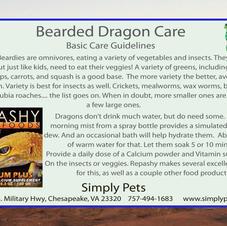 Bearded Dragon Care Side 2