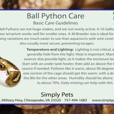 Ball Pythons Side 2