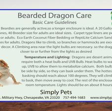 Bearded Dragon Care Side 1
