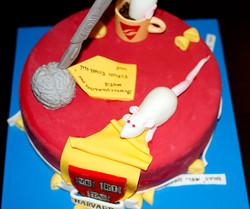 Meron's PhD Cake