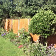 Garden Repairs