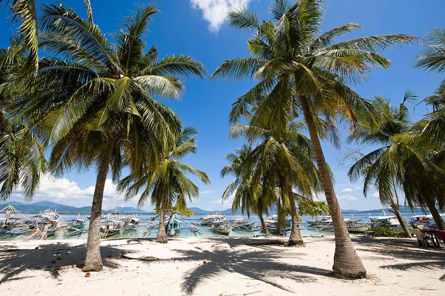 HONDA BAY PANDAN ISLAND 4