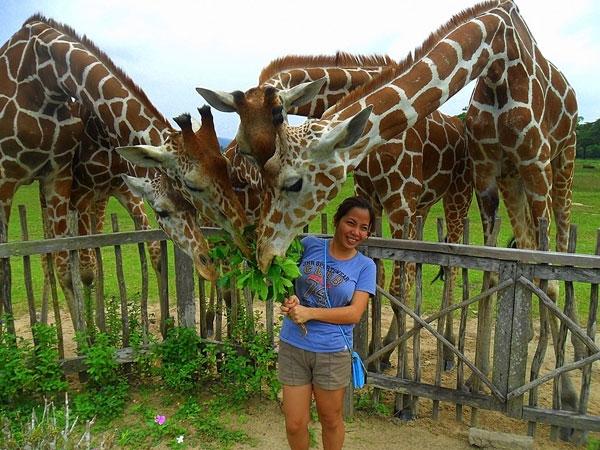 calauit-safari-tour-1