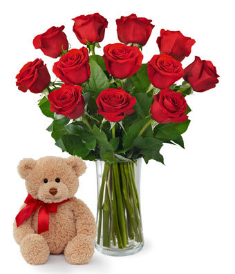 One Dozen Red Roses and Bear