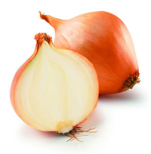 Onion (one)