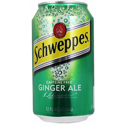 Schweppes Ginger Ale (6 pack)