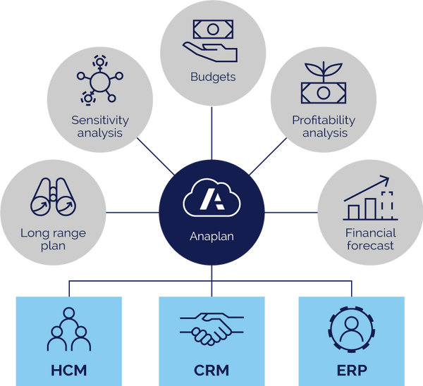 Anaplan_diagram.png