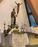 Feast of St Vincent de Paul