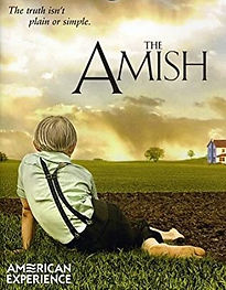 amish51RX7Q%2BvNJL_edited.jpg