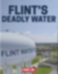 Flints%2520deadly%2520water%2520amazon_e