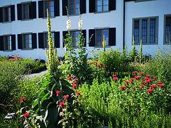 Heilkräutergarten.jpg