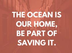 Copy of OCEAN jpegs_Page_18