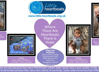 Where There Are Heartbeats, There Is Hope