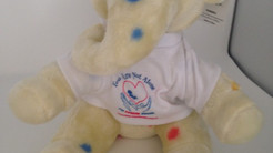Our Little Heartbeats Mascot Sinead.....