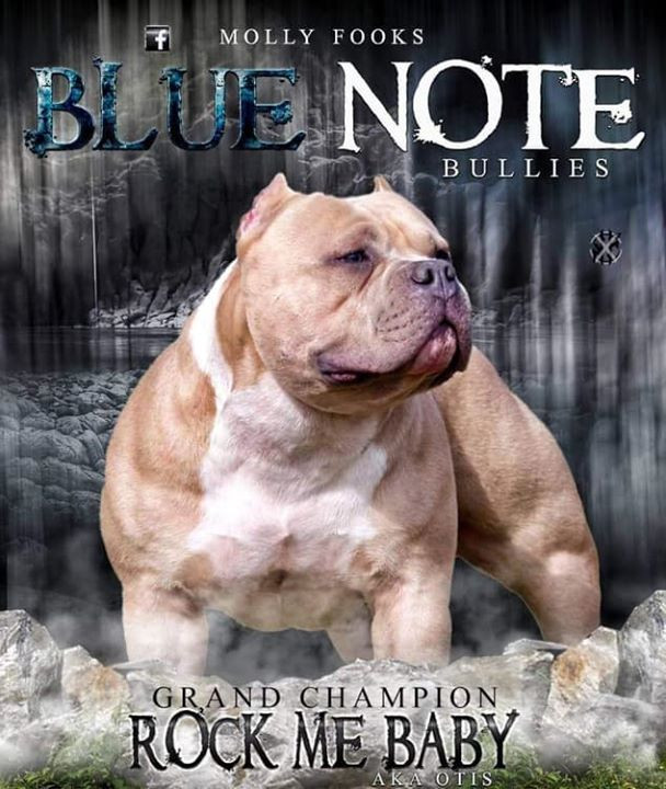 Blue Note Bullies