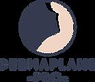 dermaplane_pro_logo.png