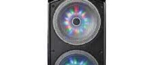 600W Portable BT Stereo