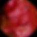 DOTS_Logo-Tex04.png