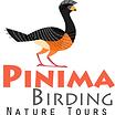 PInima Birding.png