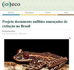 O Eco_Fev_2019.jpg
