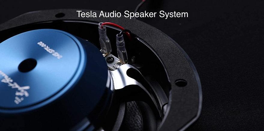 Tesla Speakers.jpg
