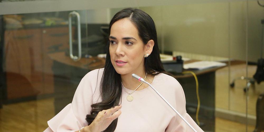 Bonilla, proyecto de Ley Maestrías