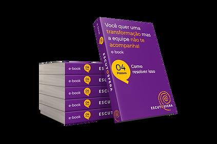 vFinal_capa_ebook_Você_quer_transformaÃ
