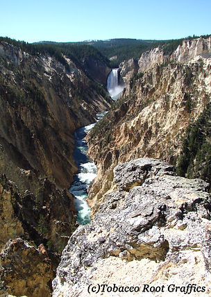 Canyon Falls - Yellowstone