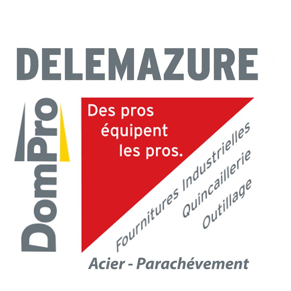 logo delemazure