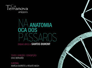 NaAnatomia.JPG