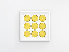 08_pineapple.jpg